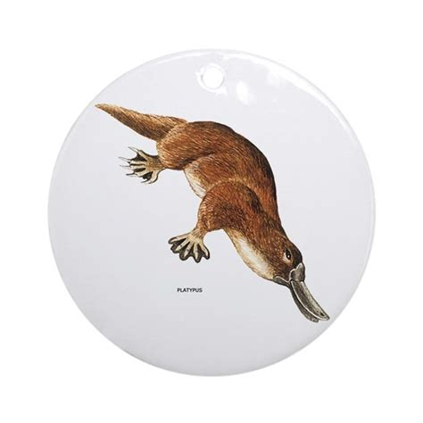 platypus animal ornament round by animalartwork
