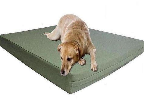 orthopedic dog beds large extra large orthopedic dog beds doherty house best