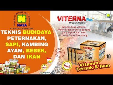 Paket Budidaya Bebek Pedaging Dengan Nasa Organik budidaya bebek itik pedaging dan petelur dengan pupuk organik nasa