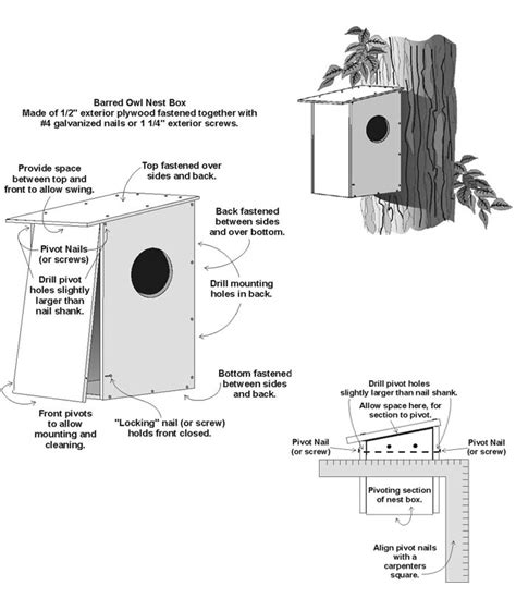barred owl nest box plan
