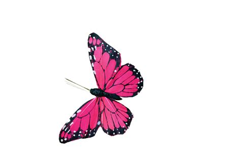 butterfly pattern png pink butterfly stock psd file by annamae22 on deviantart