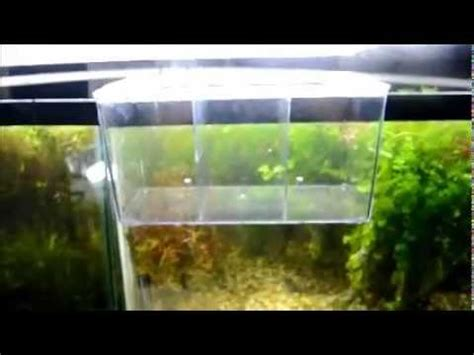 How To Make A Glass L by New 4 2 Liter 1 1 Gallon Hang On External Box House Xl