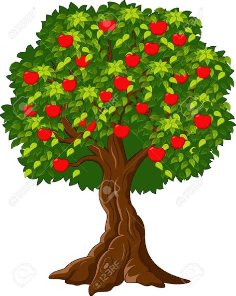 apple tree clipart apple tree clipart 101 clip