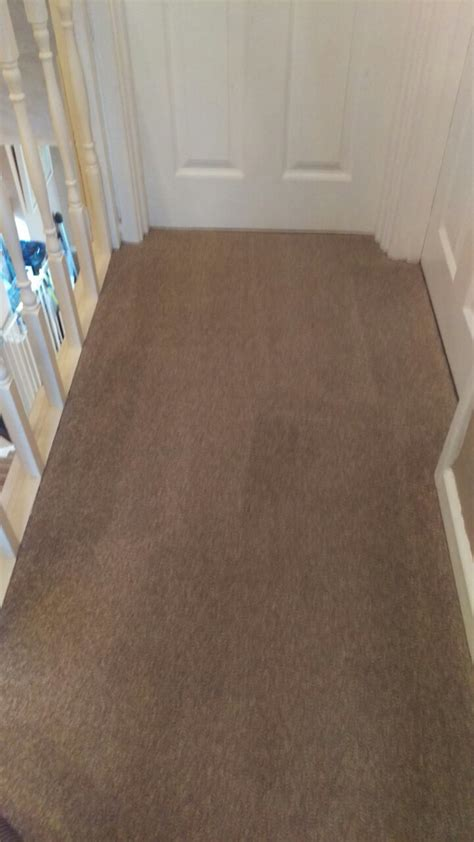 area rug cleaning ta carpet cleaning on toilet landing flight of stairs and small rug in cr0 area new addington