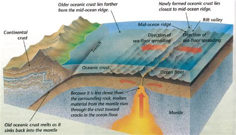 What Does Sea Floor Spreading by Team 8 2 Science