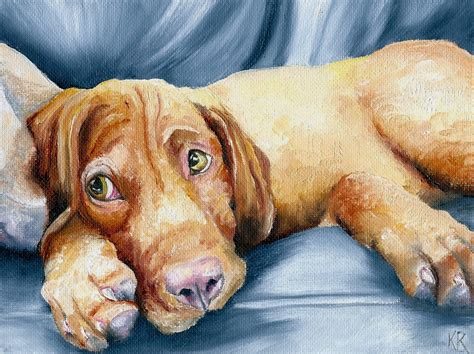 how much are vizsla puppies vizsla dogs pooch