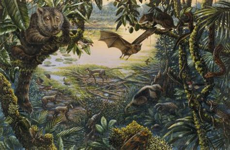 Tropical Wall Murals eoceno colecionadores de ossos