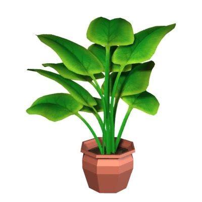 in door plants pot video three four plants argements 3d house plant pot model