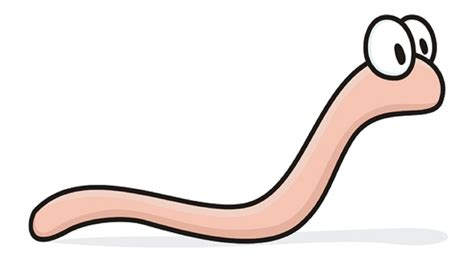 how to tell if a has worms how to tell if you worms and what to do in that