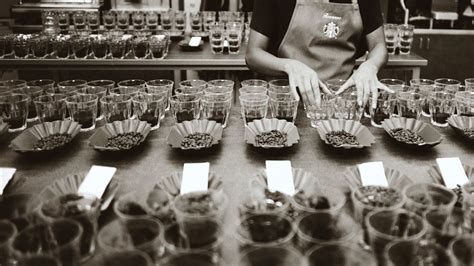 Quality Control At Starbucks: A Team Of 7 Decides On 400 Million Pounds Of Coffee Year