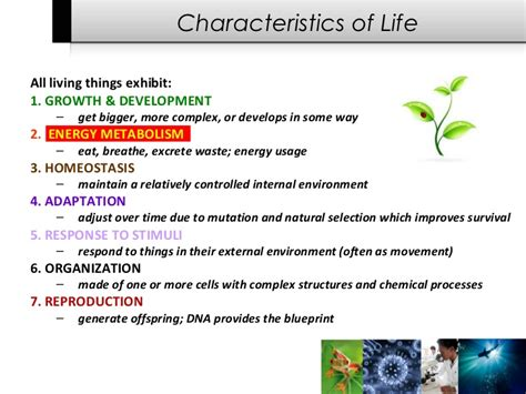 characteristics for biography characteristics of life