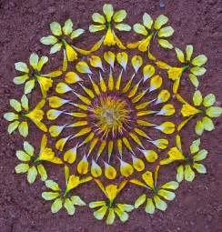 flower mandalas by kathy klein colossal