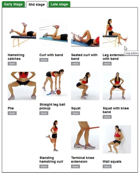 and thigh building excercises search