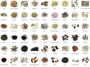 Chinese Herbs San Francisco » home remedies news