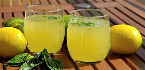 limonata fatta in casa limonata frizzante fatta in casa gianky sale e pepe