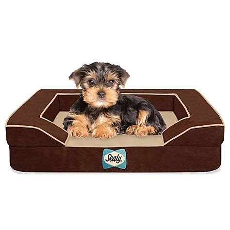 sealy dog bed sealy 174 dog bed with quad layer technology bed bath beyond