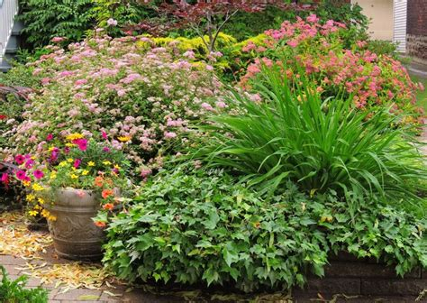 nice flower garden nice flower garden egbert s pictures pinterest