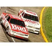 Budweiser Terry Labonte NASCAR Monte Carlo Aero Coupe