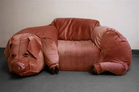 Pig Couch 187 Funny Bizarre Amazing Pictures Videos
