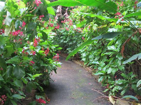 flamingo gardens south florida finds
