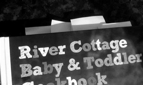 river cottage baby and b00x1876og from a whisper to a roar mummy mondays three baby toddler cookbooks reviewed
