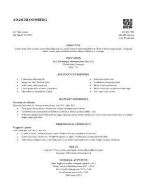 Cv Template For Internship