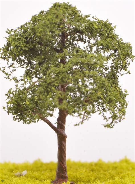 image of tree sycamore tree tw18 the model tree shop