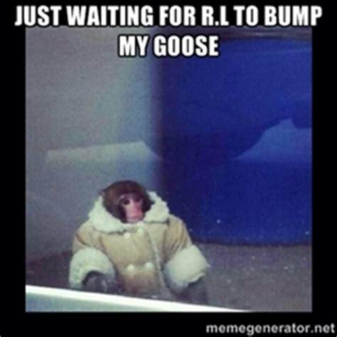 Monkey Meme Generator - ikea monkey meme generator image memes at relatably com