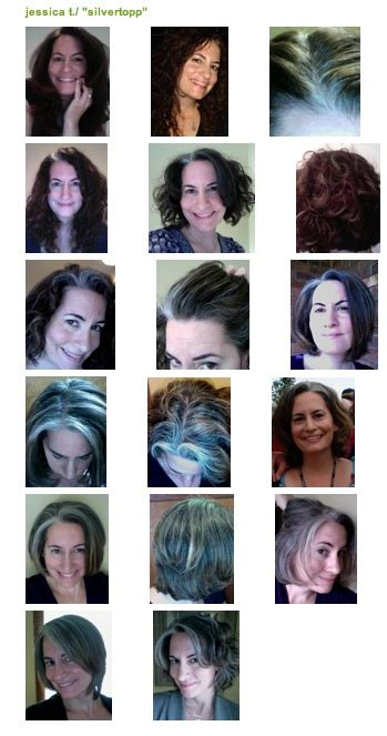 photos of how to transition to gray hair got gray blogging on the brink