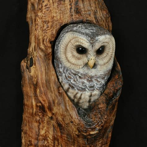 Barn House For Sale mg barred owl hand carved