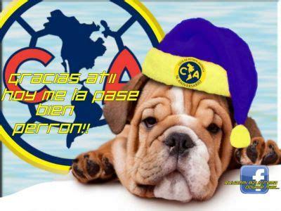 imagenes perronas de mexico navidad perrona por mraguila logo y escudo fotos del