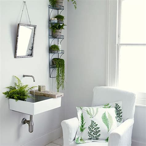 money plant in bathroom apartment plants dark top most poisonous houseplants for