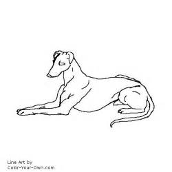 free coloring pages of border collies search