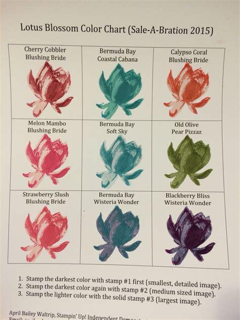 lotus flower color meaning 180 best fleur images on birthdays