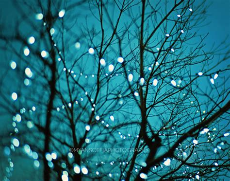 Tree Lights Photo Blue Baby Nursery Art Bokeh Photography Twinkle Tree Lights
