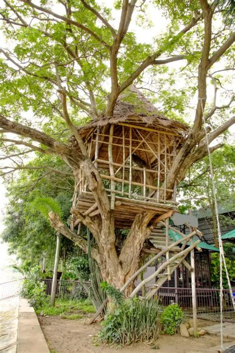 707 cherry tree way 12 best tree houses images on treehouses tree houses and tree forts