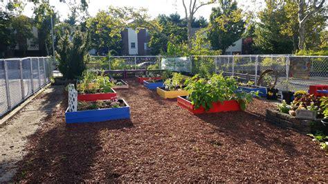 backyard garden florist fayetteville ny 100 backyard garden florist fayetteville ny wedding