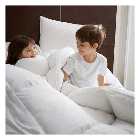 polish goose down comforter scandia down vienna polish white goose down comforter