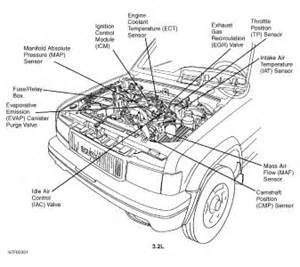 2000 Isuzu Rodeo Engine Diagram Isuzu Rodeo Fuel Filter Location Get Free Image About