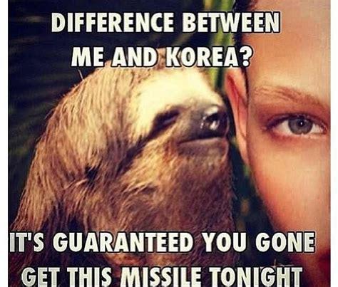 sloths life images  pinterest ha ha funny