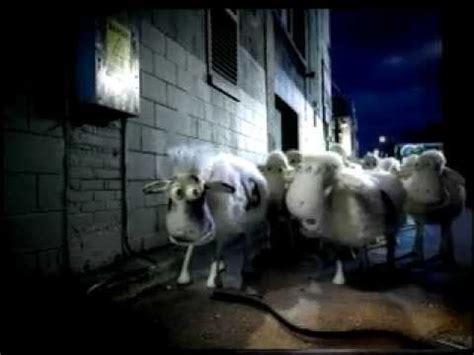 Sheep Mattress Commercial by Serta Sheep Guilt Tv Ad New Doovi
