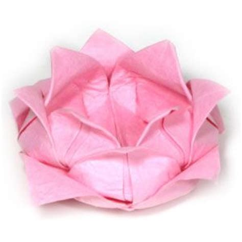Origami Black Lotus - lotus origami and lotus flowers on
