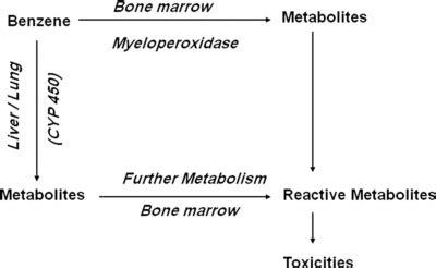 Benzene Detox by Scientific Publications