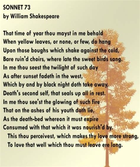 the sonnets by william shakespeare books best 25 william shakespeare sonnets ideas on