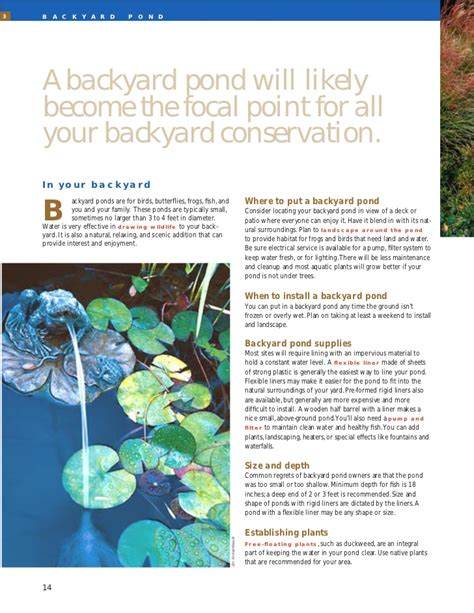 backyard conservation backyard conservation bringing the countryside to your