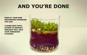 make your own terrarium ikea patios gardens
