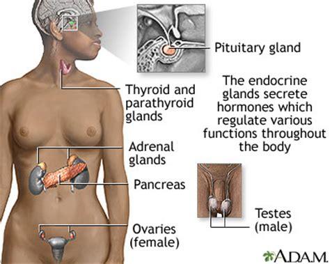 urology care foundation what is an adrenal mass?