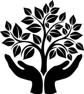 symbolism trees pinterest the world s catalog of ideas