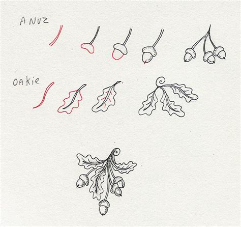 start a doodle 1000 images about zentangle steps how to