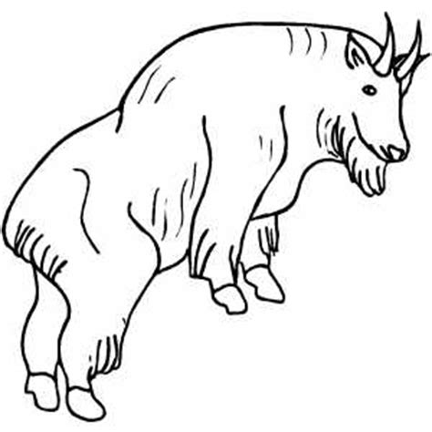 coloring pages mountain goat coloring sheets of mountain goats coloring pages